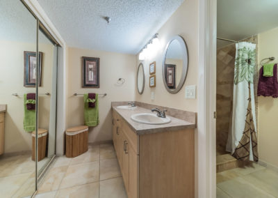 Master Bathroom1b